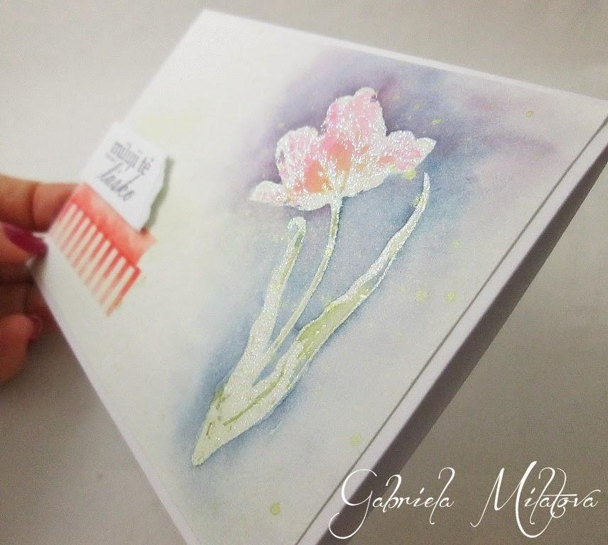 prani-love-tulip-salmon5